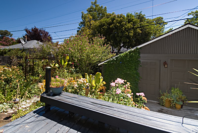 1201 Dolores Way East Sacramento Rental 95831 95823 95825 Sacramento Greenhaven Sacramento